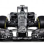 red bull rb11 frontal
